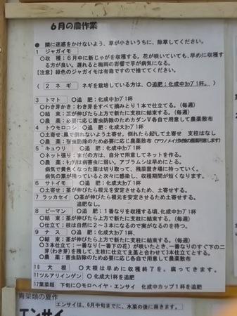 DSC_1882.JPG